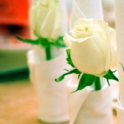如何让新娘的指尖闪耀起来?