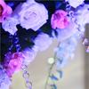婚庆网之新娘外景拍摄婚纱照必备单品
